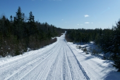 Snow-10-Jan-23-010